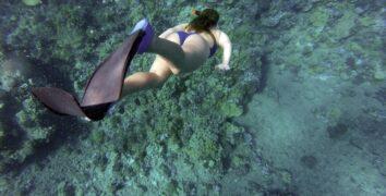 Fare-diving-e-snorkeling-a-lampedusa